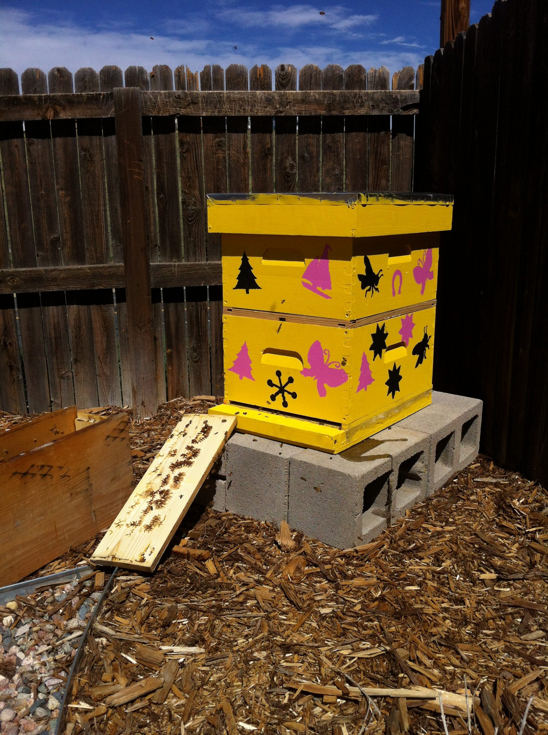 Betsy's Bees
